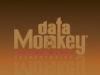 Data Monkey Business Card (front)
